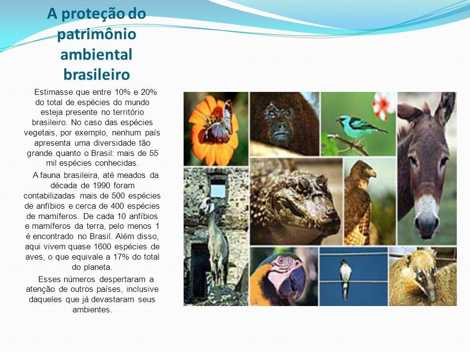 A proteção do patrimônio ambiental brasileiro