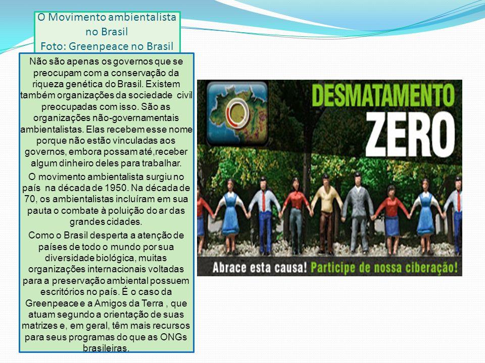 O Movimento ambientalista no Brasil Foto: Greenpeace no Brasil