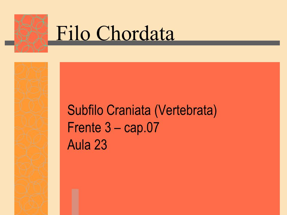 Subfilo Craniata (Vertebrata) Frente 3 – cap.07 Aula 23