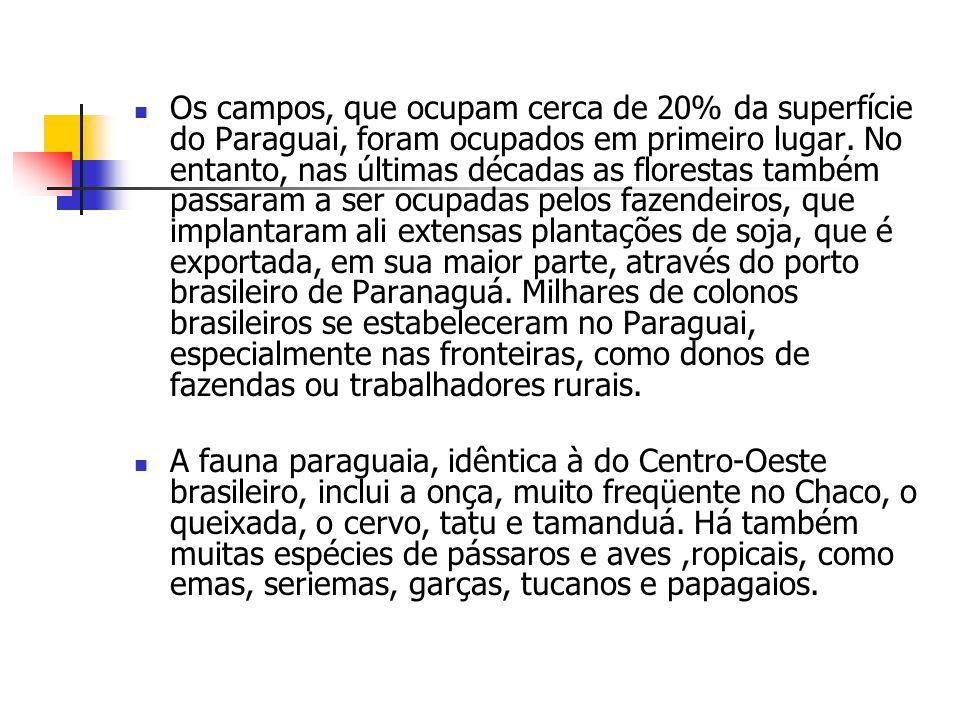 Os campos, que ocupam cerca de 20% da superfície do Paraguai, foram ocupados em primeiro lugar. No entanto, nas últimas décadas as florestas também passaram a ser ocupadas pelos fazendeiros, que implantaram ali extensas plantações de soja, que é exportada, em sua maior parte, através do porto brasileiro de Paranaguá. Milhares de colonos brasileiros se estabeleceram no Paraguai, especialmente nas fronteiras, como donos de fazendas ou trabalhadores rurais.