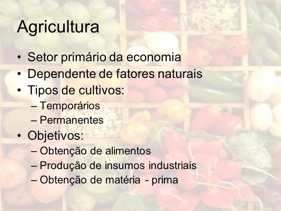 Agricultura Setor primário da economia Dependente de fatores naturais