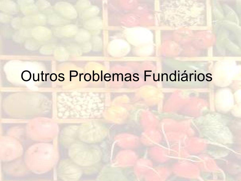 Outros Problemas Fundiários