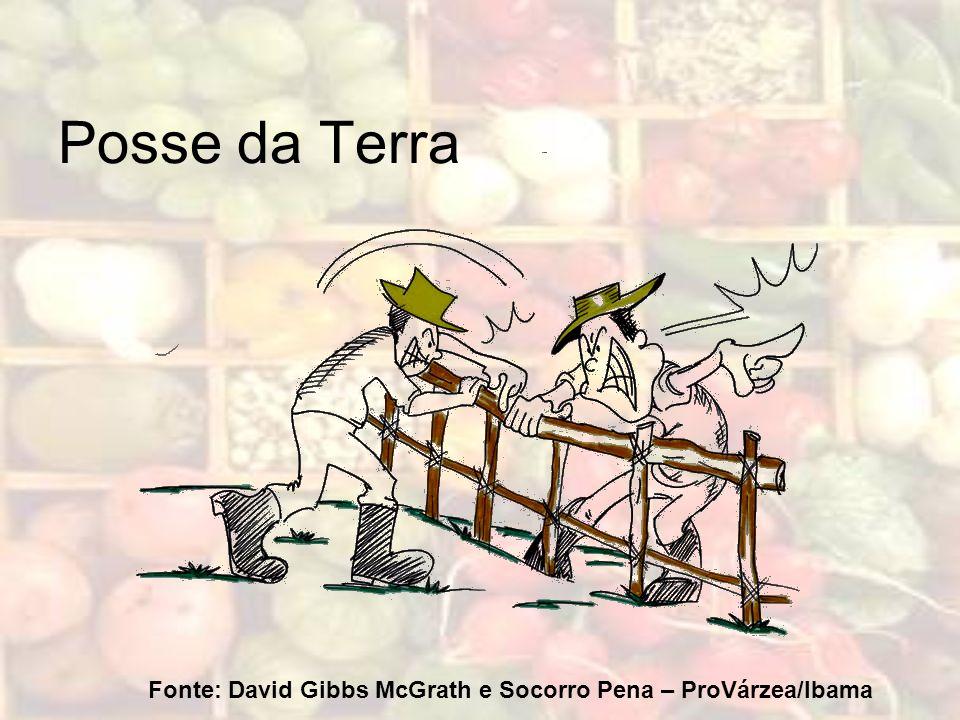 Fonte: David Gibbs McGrath e Socorro Pena – ProVárzea/Ibama