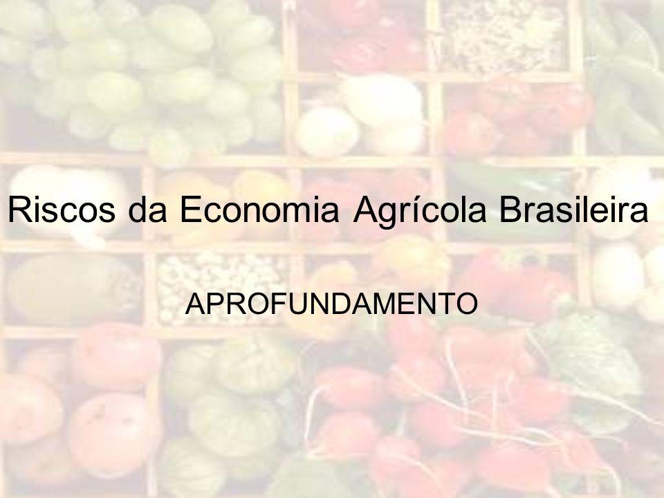 Riscos da Economia Agrícola Brasileira