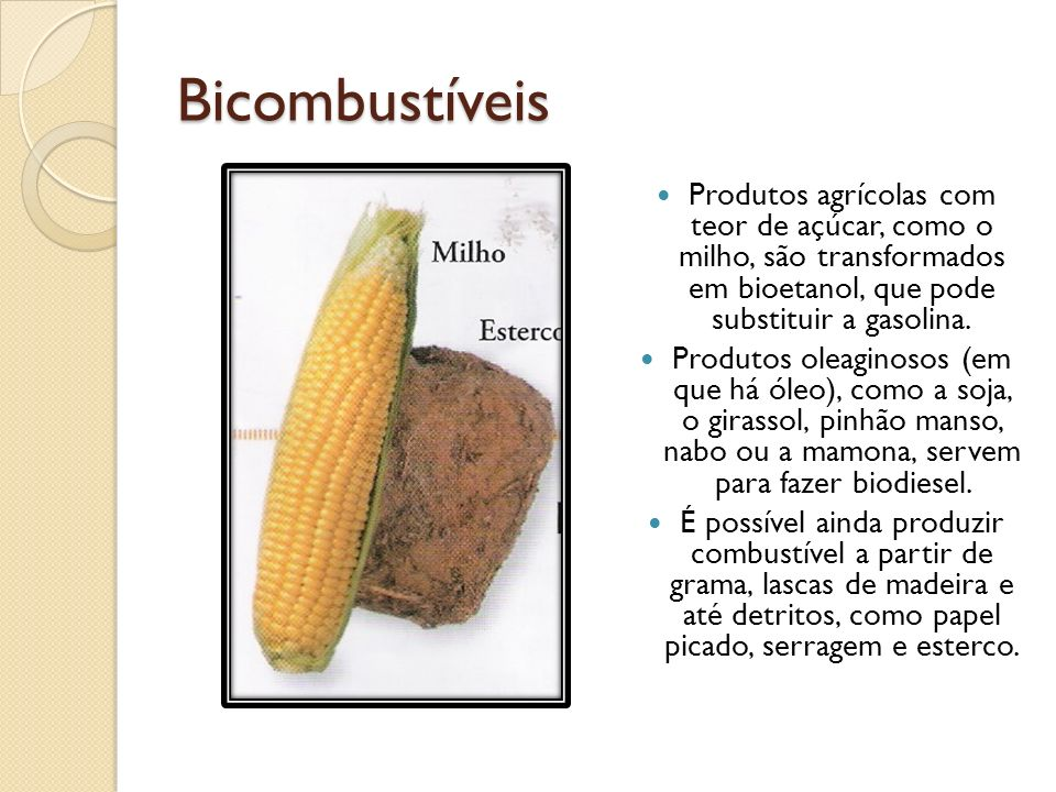 BicombustíveisProdutos agrícolas com teor de açúcar, como o milho, são transformados em bioetanol, que pode substituir a gasolina.