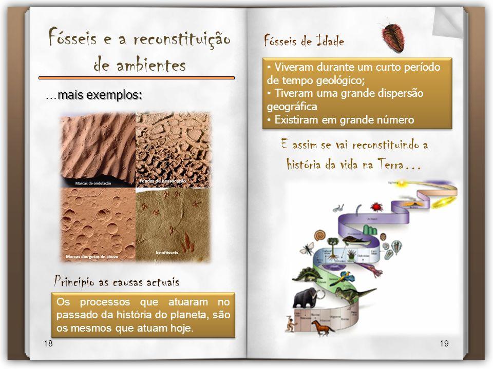 Fósseis e a reconstituição de ambientes