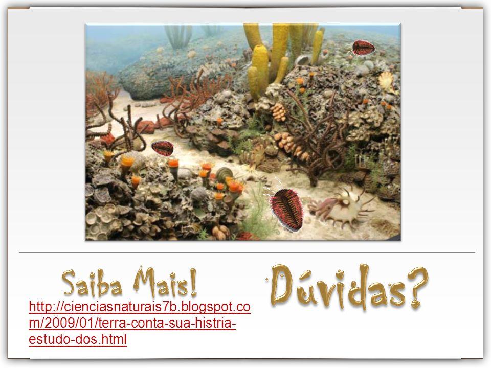 Dúvidas Saiba Mais! http://cienciasnaturais7b.blogspot.com/2009/01/terra-conta-sua-histria-estudo-dos.html.