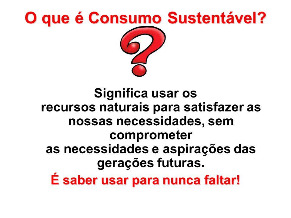 O que é Consumo Sustentável