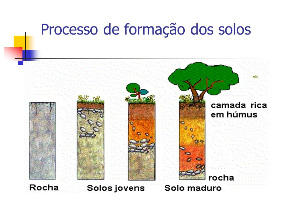 Processo de formação dos solos