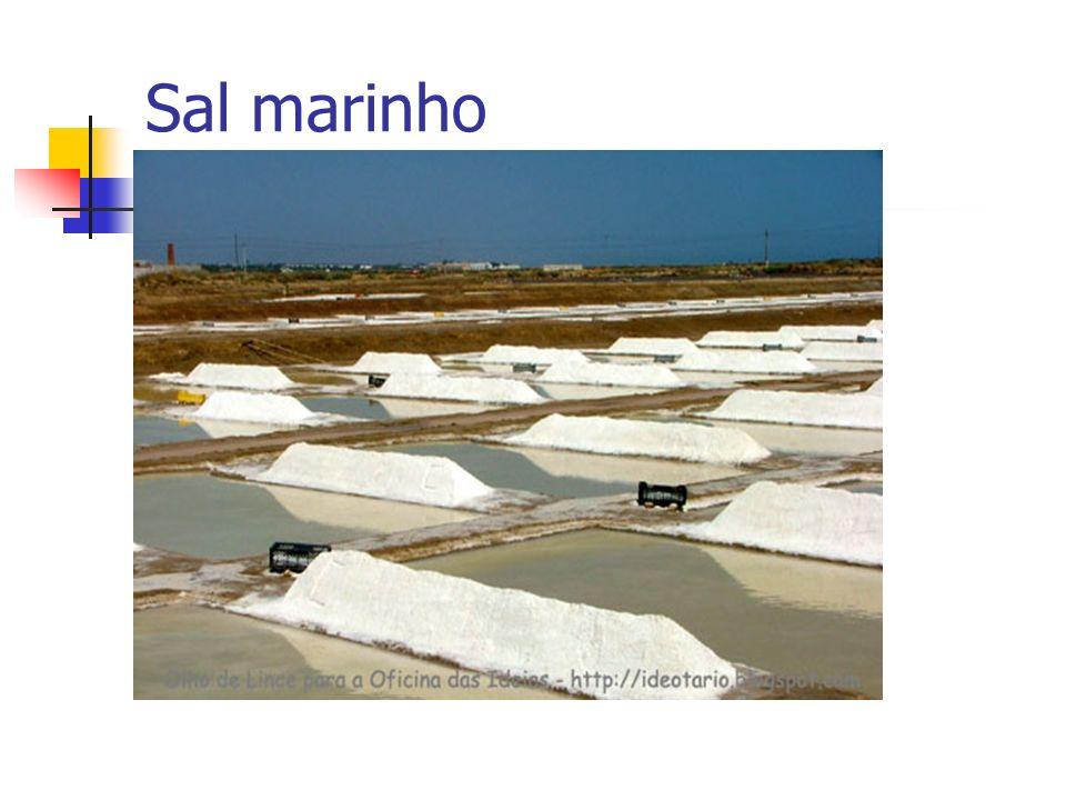 Sal marinho