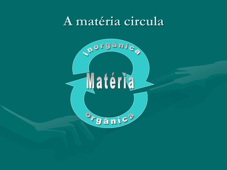 A matéria circula inorgânica Matéria orgânica