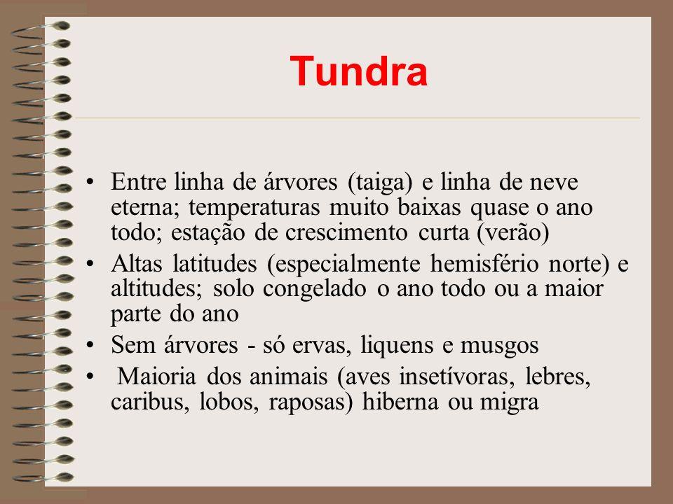 Tundra Entre linha de árvores (taiga) e linha de neve eterna; temperaturas muito baixas quase o ano todo; estação de crescimento curta (verão)