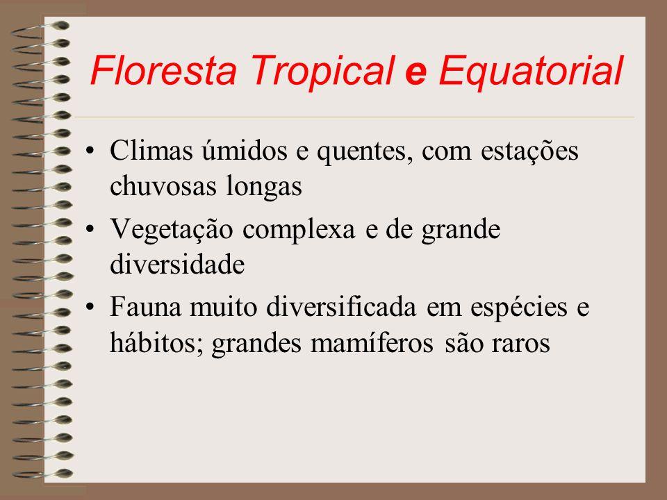 Floresta Tropical e Equatorial
