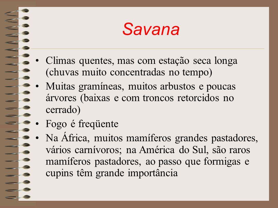 Savana Climas quentes, mas com estação seca longa (chuvas muito concentradas no tempo)