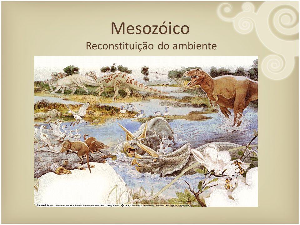 Reconstituição do ambiente