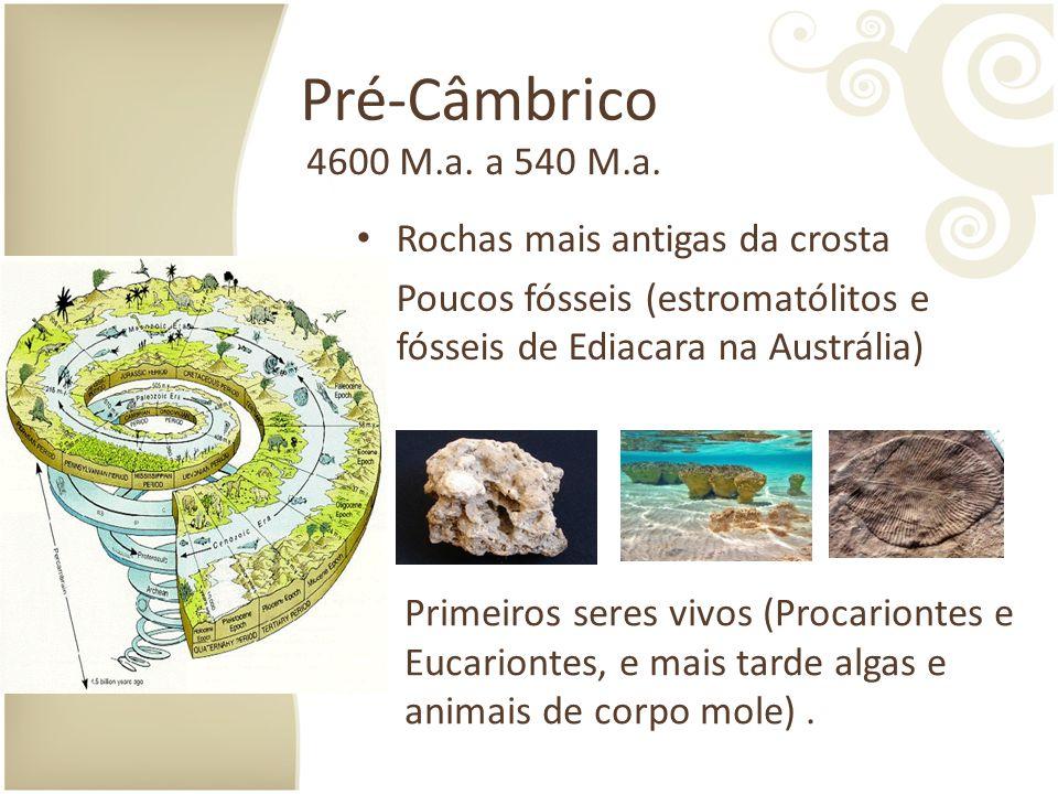 Pré-Câmbrico 4600 M.a. a 540 M.a. Rochas mais antigas da crosta