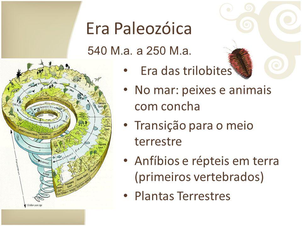 Era Paleozóica Era das trilobites No mar: peixes e animais com concha