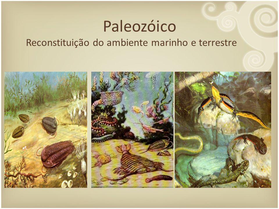 Paleozóico Reconstituição do ambiente marinho e terrestre