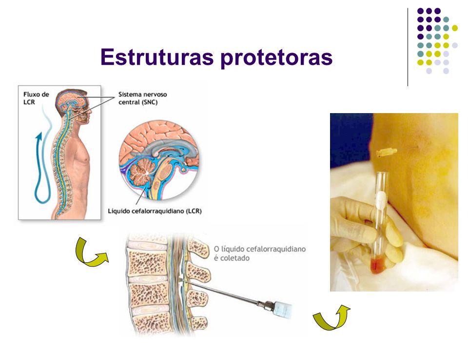 Estruturas protetoras