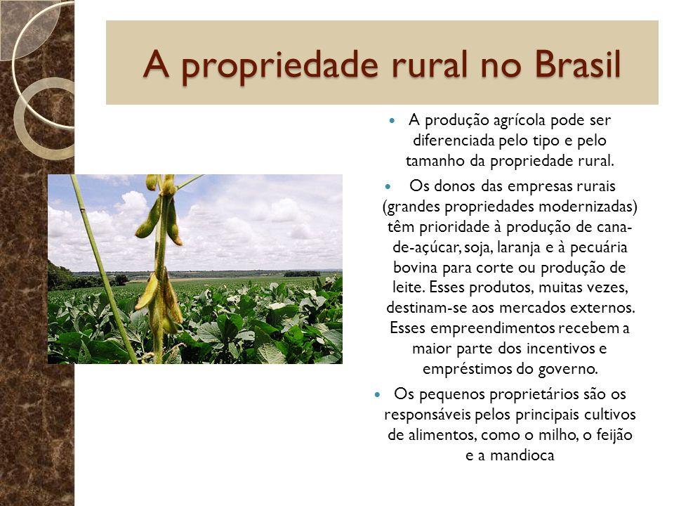A propriedade rural no Brasil