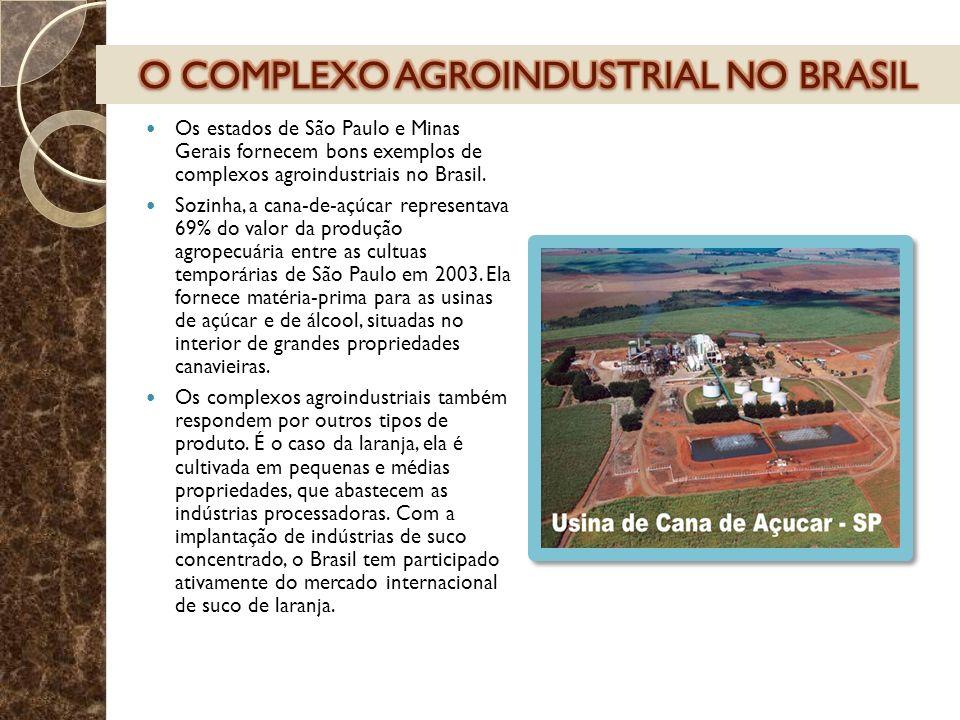 O COMPLEXO AGROINDUSTRIAL NO BRASIL