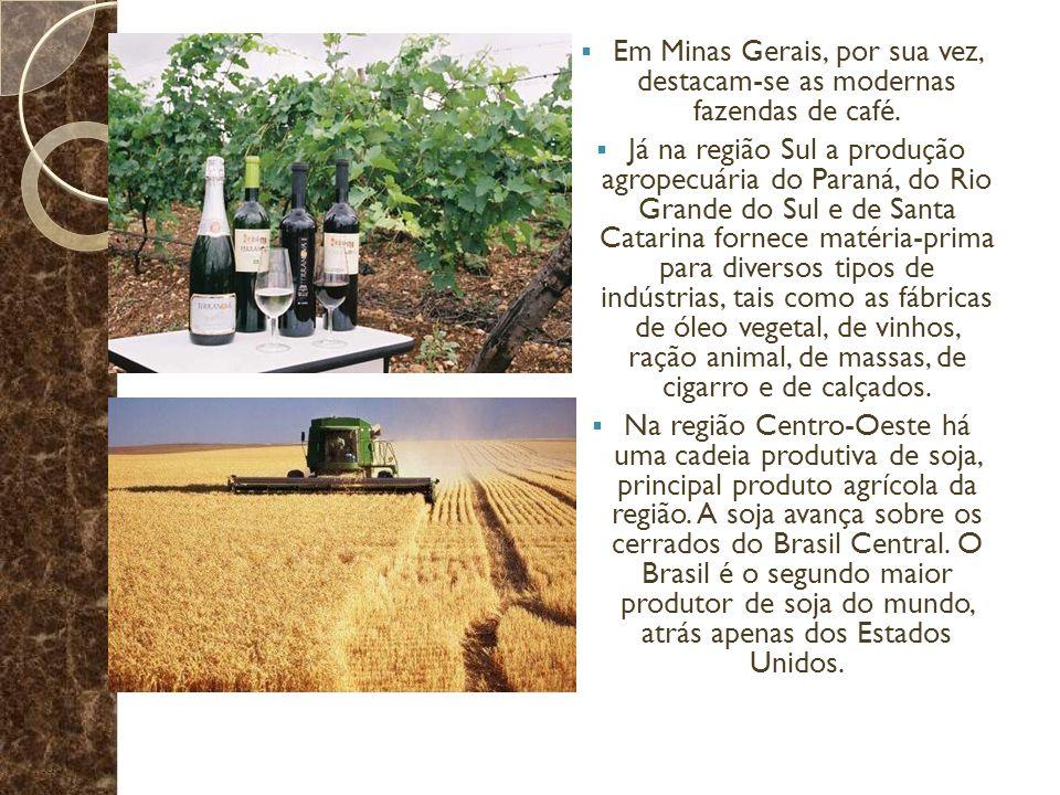 Em Minas Gerais, por sua vez, destacam-se as modernas fazendas de café.