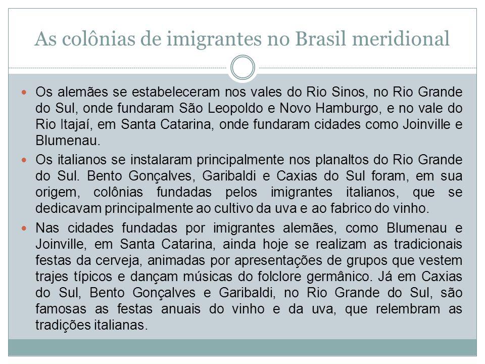 As colônias de imigrantes no Brasil meridional