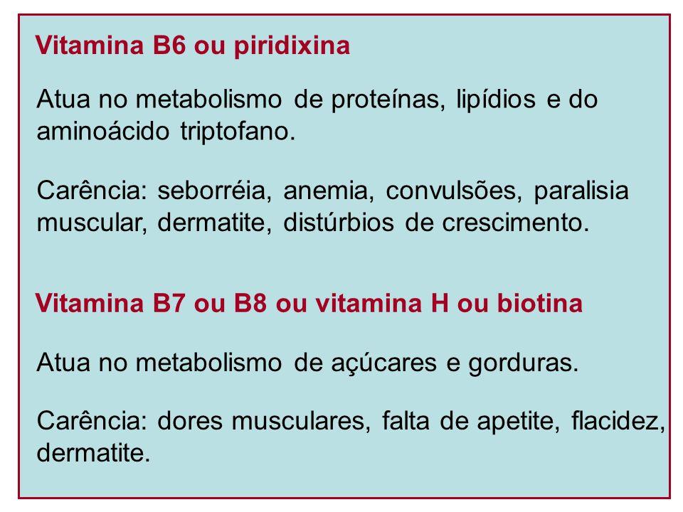 Vitamina B6 ou piridixina