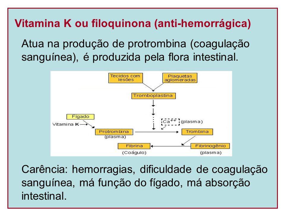 Vitamina K ou filoquinona (anti-hemorrágica)