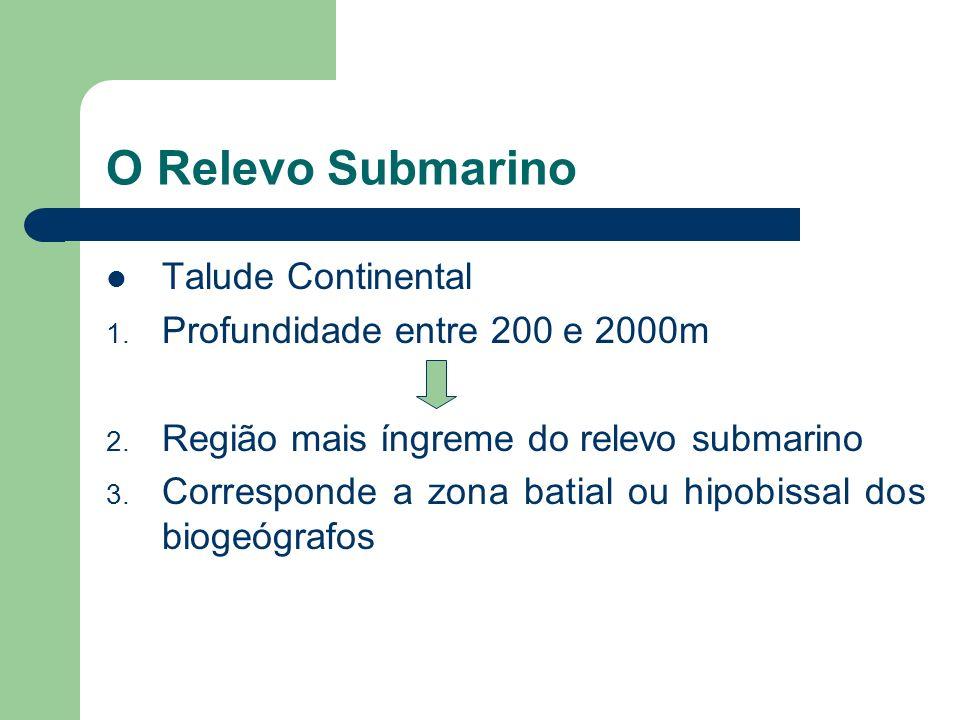O Relevo Submarino Talude Continental Profundidade entre 200 e 2000m