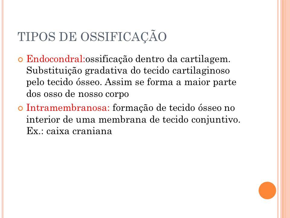 TIPOS DE OSSIFICAÇÃO