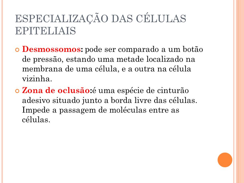 ESPECIALIZAÇÃO DAS CÉLULAS EPITELIAIS