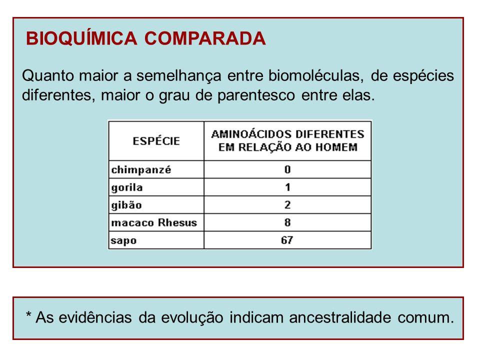 BIOQUÍMICA COMPARADA Quanto maior a semelhança entre biomoléculas, de espécies. diferentes, maior o grau de parentesco entre elas.