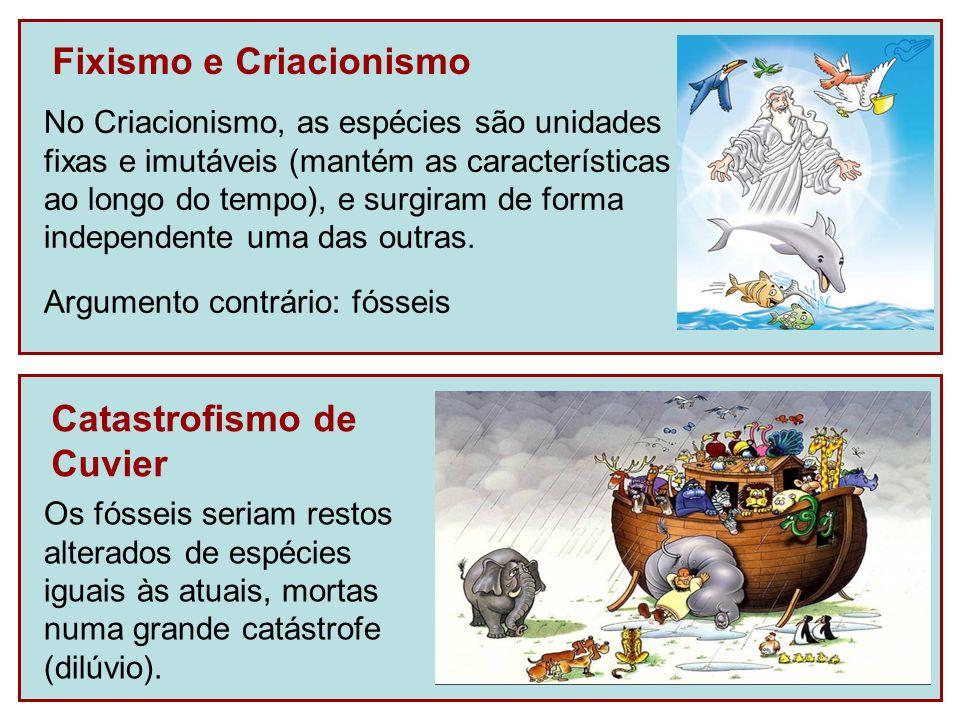 Fixismo e Criacionismo