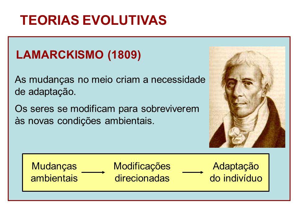 TEORIAS EVOLUTIVAS LAMARCKISMO (1809)