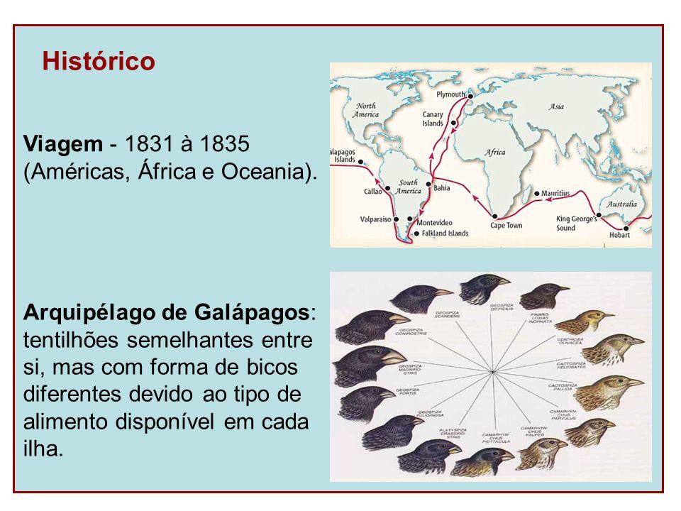 Histórico Viagem - 1831 à 1835 (Américas, África e Oceania).