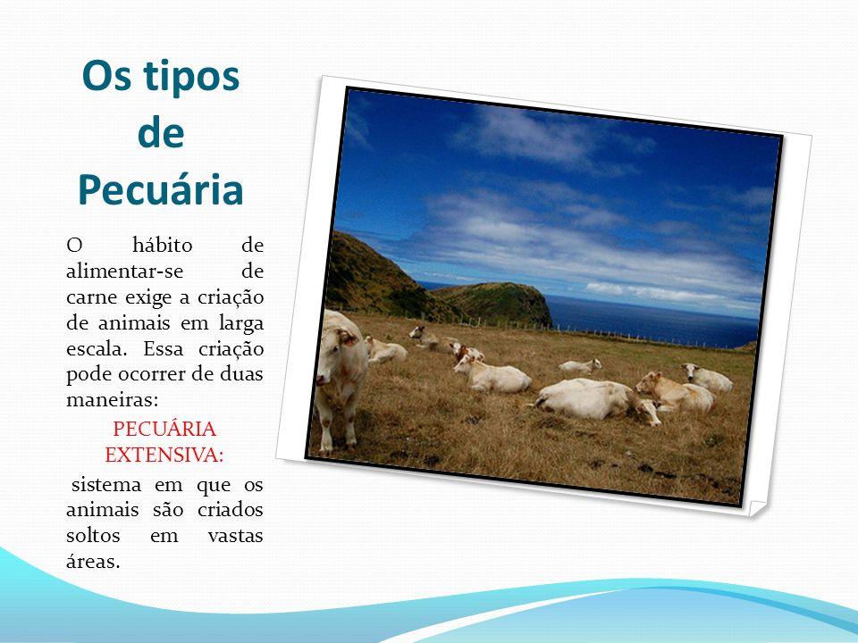Os tipos de PecuáriaO hábito de alimentar-se de carne exige a criação de animais em larga escala. Essa criação pode ocorrer de duas maneiras:
