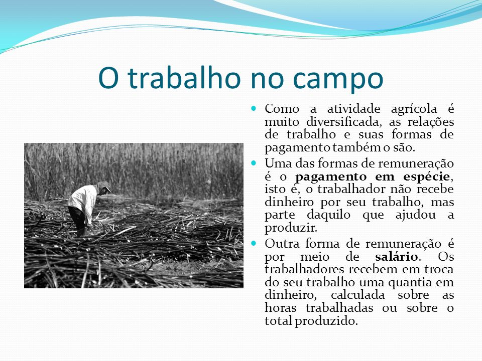 O trabalho no campoComo a atividade agrícola é muito diversificada, as relações de trabalho e suas formas de pagamento também o são.