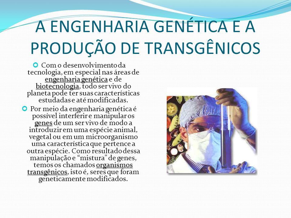 A ENGENHARIA GENÉTICA E A PRODUÇÃO DE TRANSGÊNICOS
