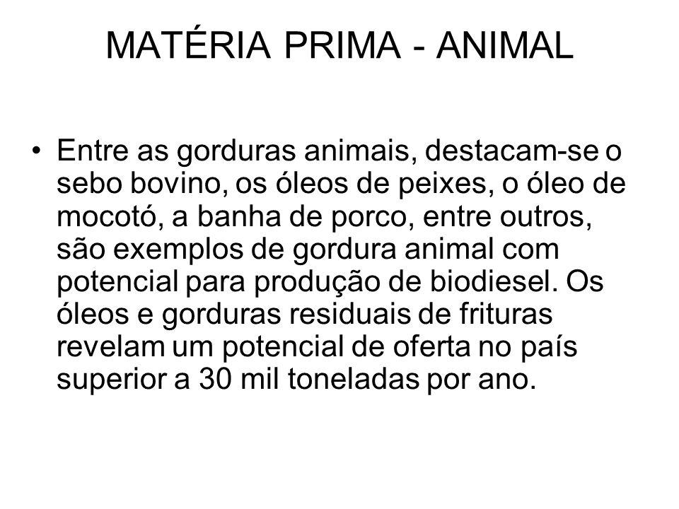 MATÉRIA PRIMA - ANIMAL