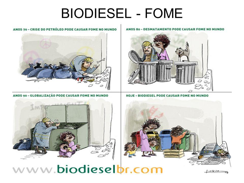 BIODIESEL - FOME