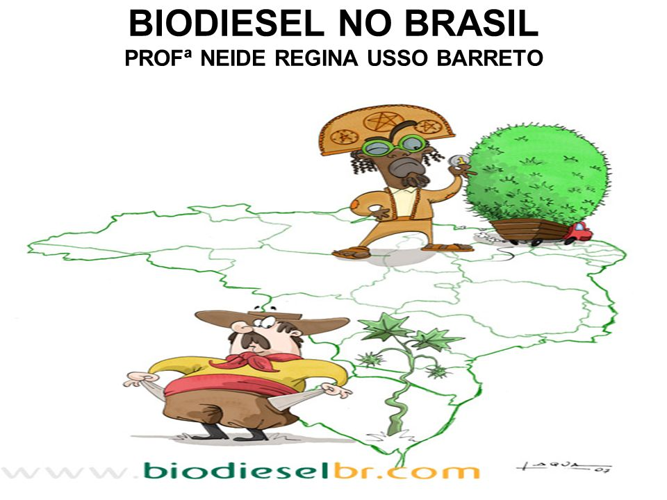 BIODIESEL NO BRASIL PROFª NEIDE REGINA USSO BARRETO