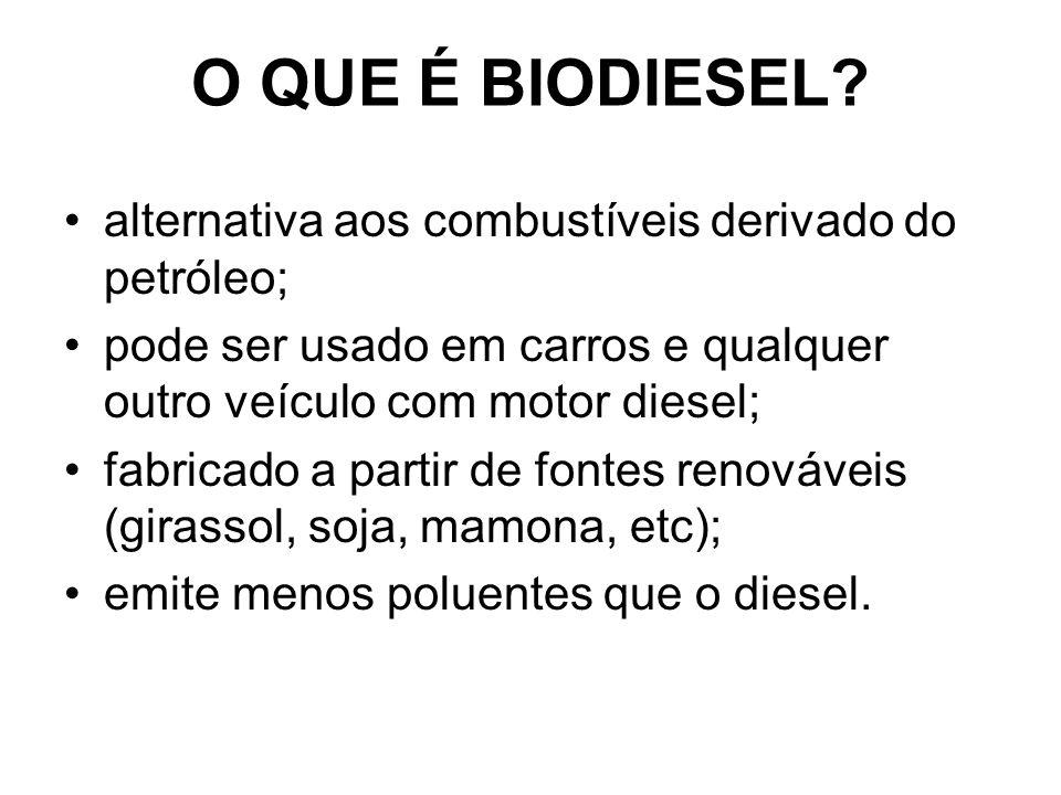 O QUE É BIODIESEL alternativa aos combustíveis derivado do petróleo;