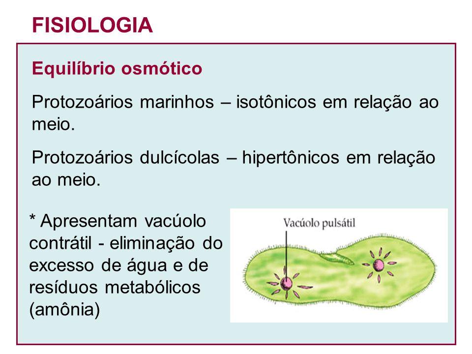 FISIOLOGIA Equilíbrio osmótico