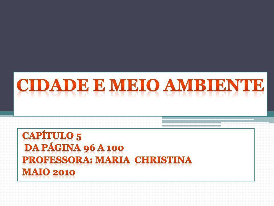 Capítulo 5 Da página 96 a 100 Professora: Maria christina Maio 2010