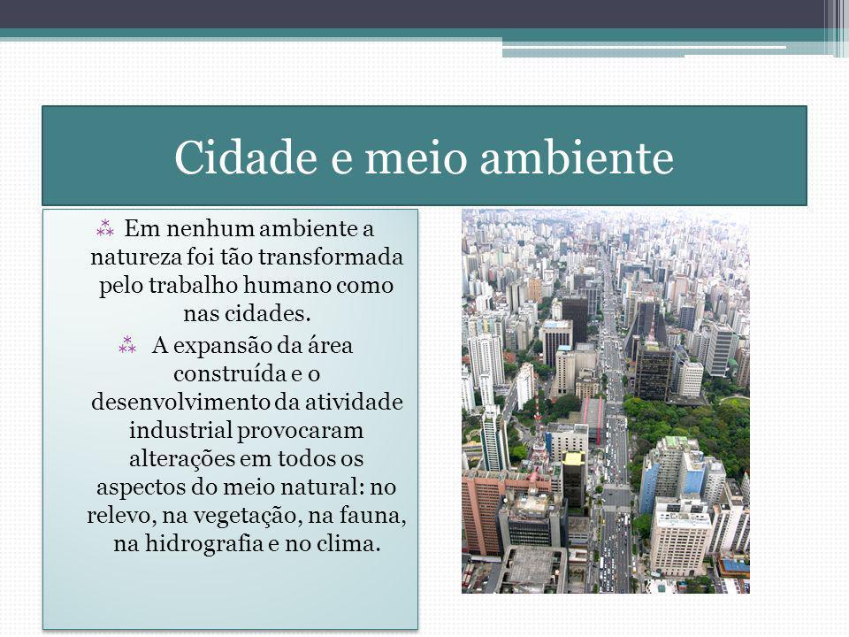 Cidade e meio ambiente Em nenhum ambiente a natureza foi tão transformada pelo trabalho humano como nas cidades.