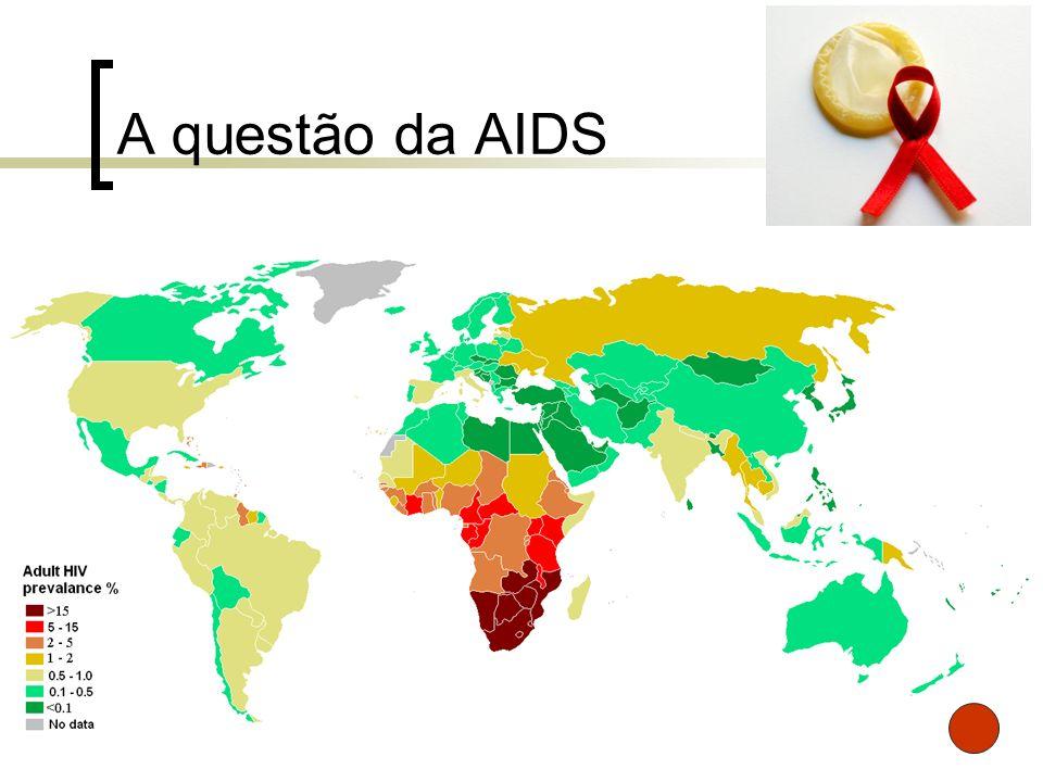 A questão da AIDS 33,2 milhões são portadores do vírus HIV, dos quais 64,5% residem na África Negra;