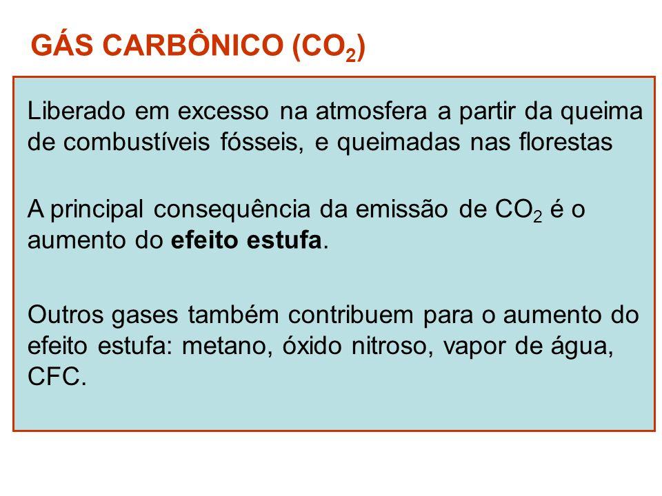 GÁS CARBÔNICO (CO2) Liberado em excesso na atmosfera a partir da queima. de combustíveis fósseis, e queimadas nas florestas.