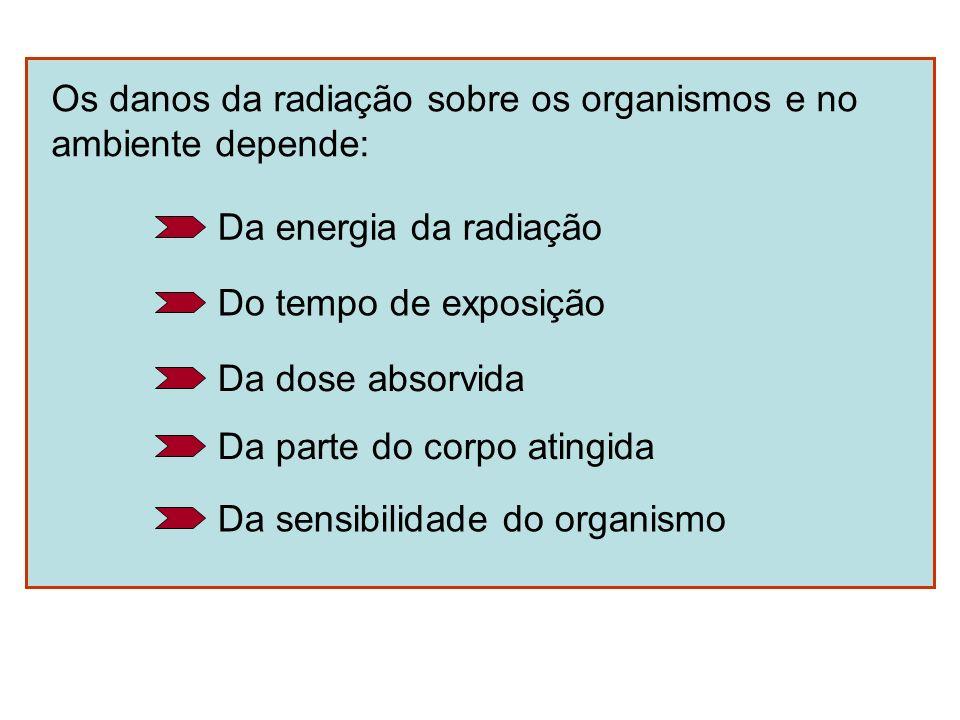 Os danos da radiação sobre os organismos e no