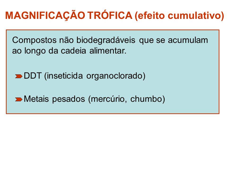 MAGNIFICAÇÃO TRÓFICA (efeito cumulativo)